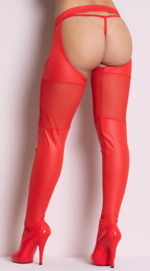 Photo of Wet Look and Mesh Garter Stockings @EX4.NL Exclusive Lingerie