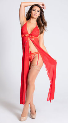Photo of Long Mesh Babydoll and Thong Set @EX4.NL Exclusive Lingerie